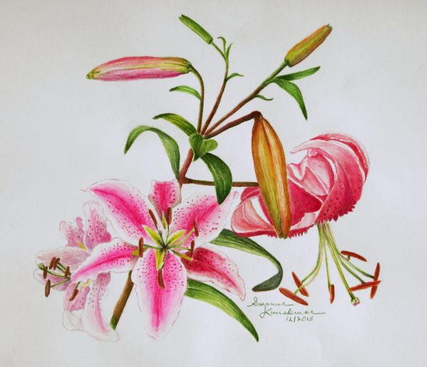 1920x1229201515463Kuuskmae__Suzanne__Red_Lilies__watercolor